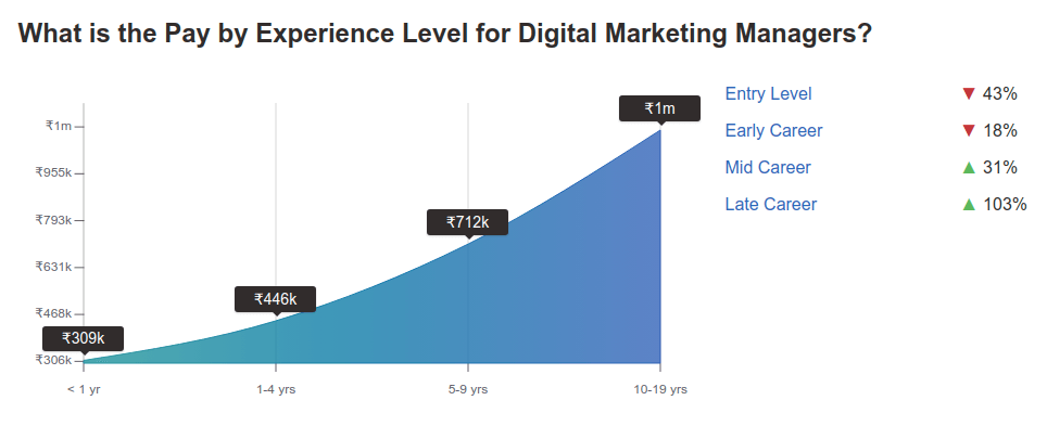 Digital marketing manager salary in India PayScale